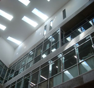 Roland Levinsky Building